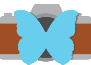 Gabrielle Design Logo